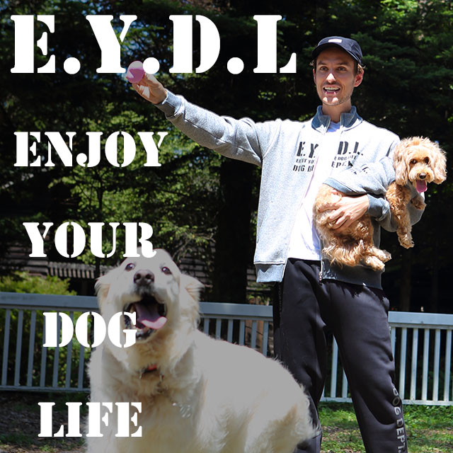 E.Y.D.Lニット裏毛シリーズ ブランドのドッグデプト/DOG DEPT ペアルック